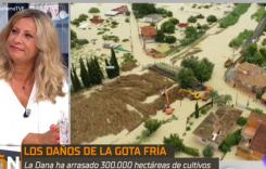 consejo Elena Jiménez de Andrade