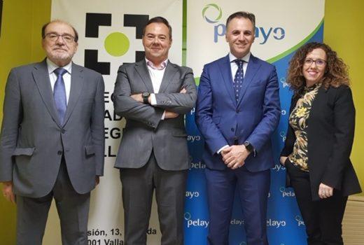 Valladolid Pelayo renovacion