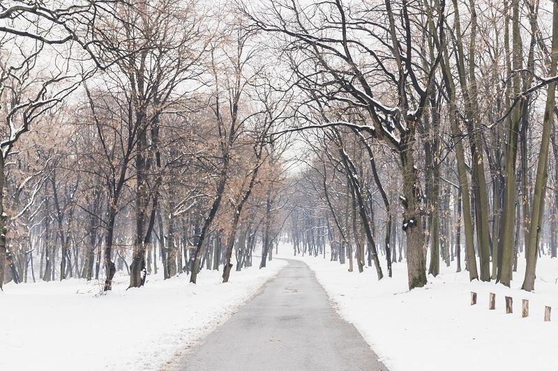nieve invierno