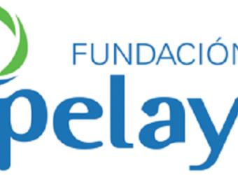 fundacion-pelayo